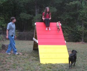 The a-frame Phill built for the dogs in the backyard of our Deer Creek home in Hoschton.  Phill Roey.  Emma Roey