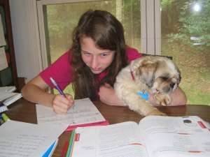 Emma and foster dog, Willie, who was happy to sit with her while she worked on her homeschooling.